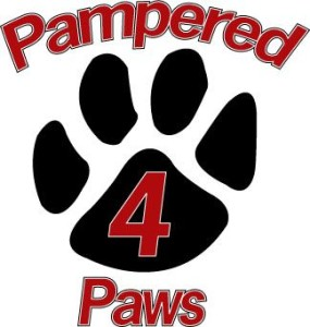 Pampered 4 Paws